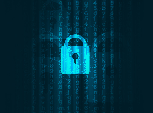Internet Security with SSL/TLS and MPPE Encryption