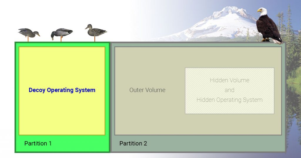 Decoy Operating Systems