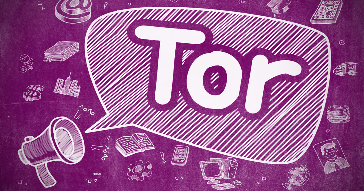 What is Tor? A Beginner's Guide