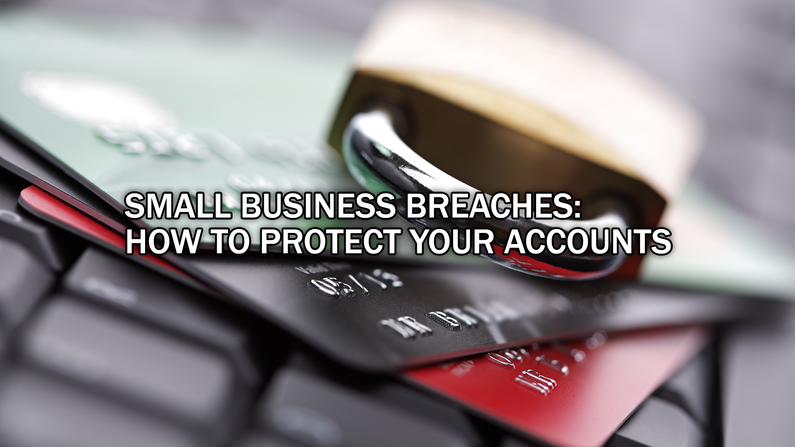 Identity and Card Theft – Shielding Yourself from the Unsafe Small Business